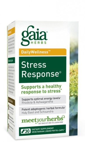 Stress Response Review