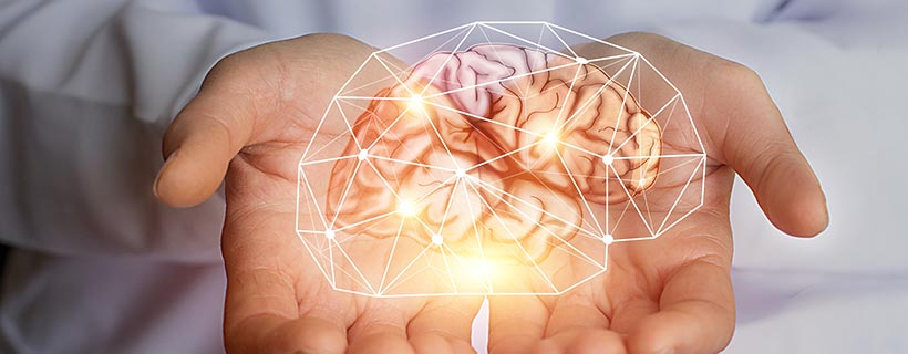 BrainReference's View on Brain Health