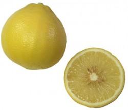 Bergamot Orange