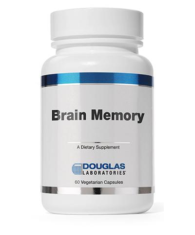 Brain Memory Review