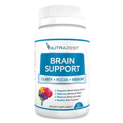 Brain Support Review
