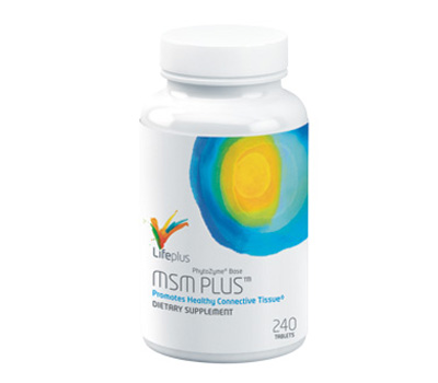 MSM Plus Review