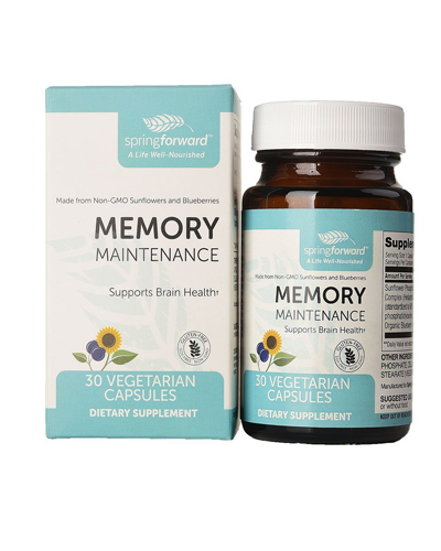 Memory Maintenance Review