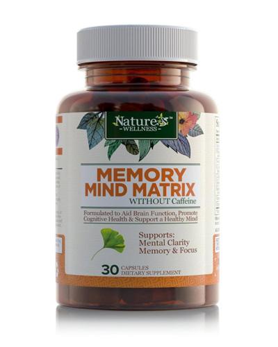 Memory Mind Matrix Review