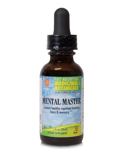 Mental Master Review
