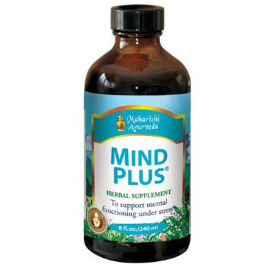 Mind Plus Review