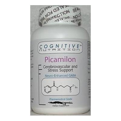 Picamilon Review