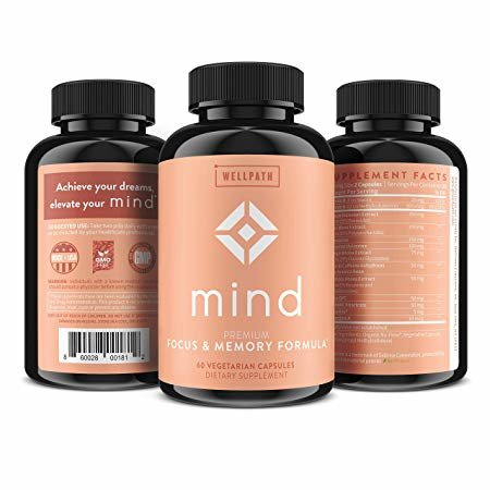 WellPath MIND Review