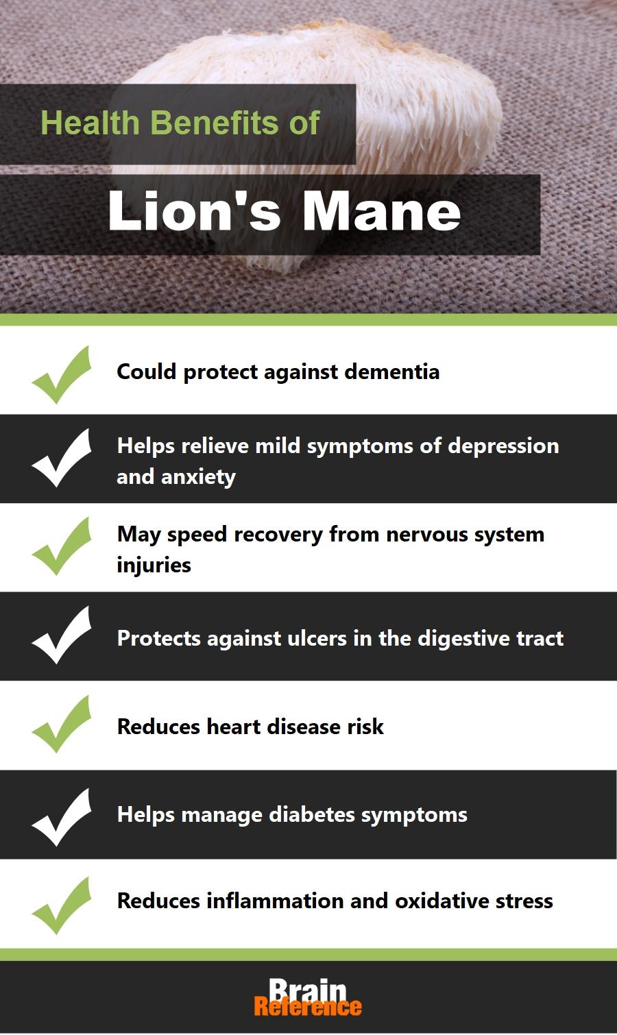 Lions-Mane-Dr.Emil-Nutrition-Health-Benefits-of-Lions-Mane