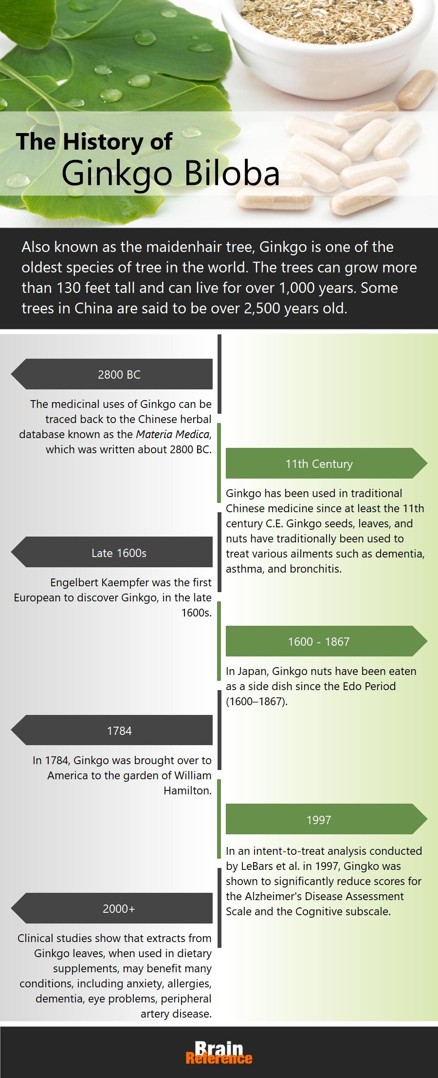 NeuroIgnite-Havasu-Nutrition-Ginkgo-Biloba-History